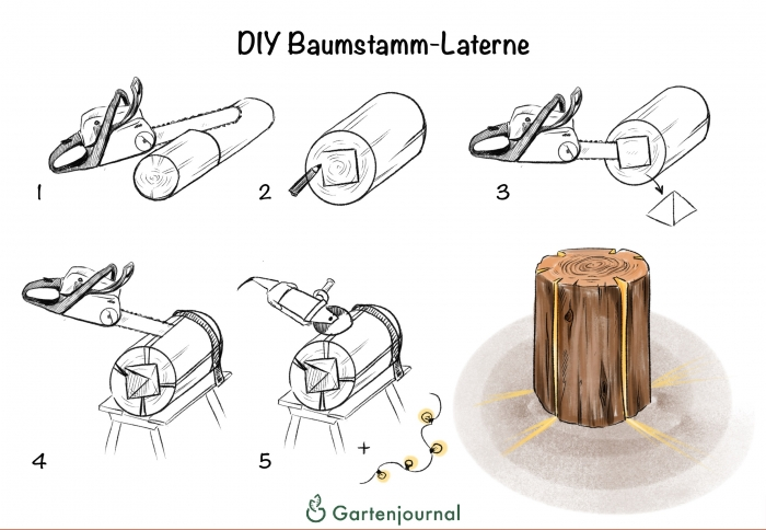 DIY Baumstamm-Laterne