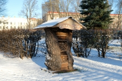 insekten-im-winter